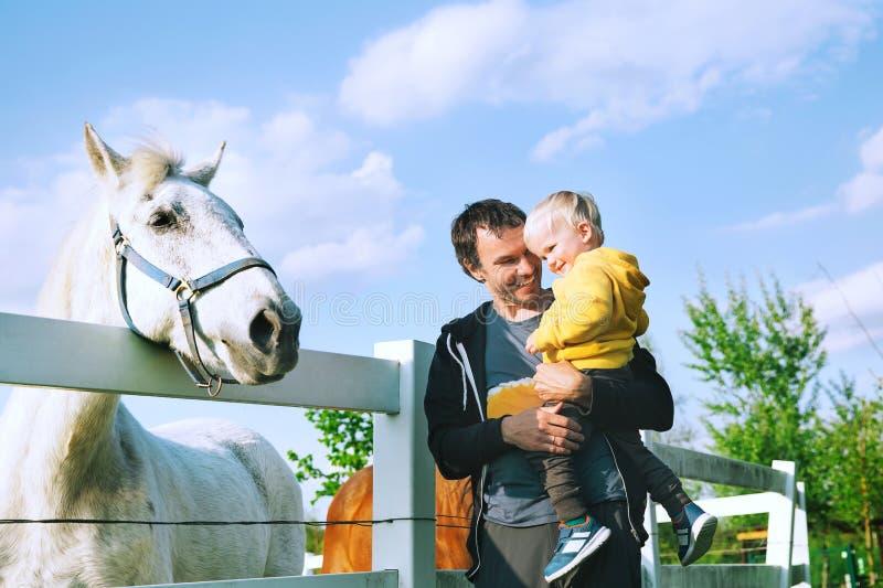 Fadern och sonen är matning per häst på bygd fotografering för bildbyråer