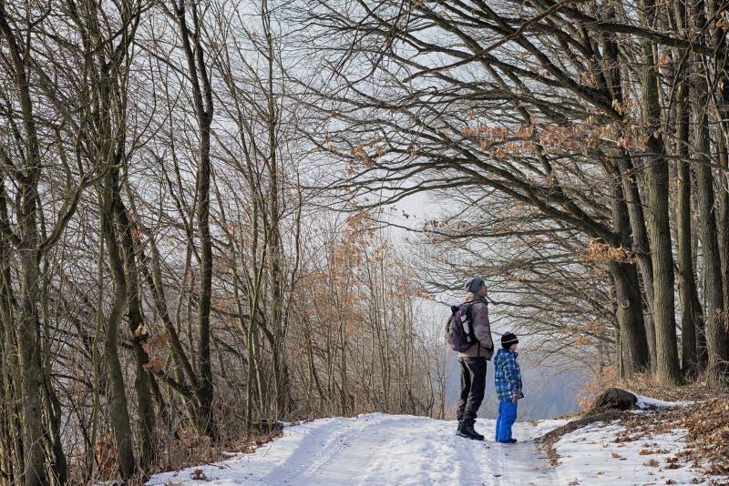 Fadern och sonen på vinterskog går arkivfoto