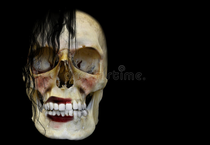 Fading Beauty. A female human skull portraying the concept that beauty is only skin deep after all royalty free stock photography
