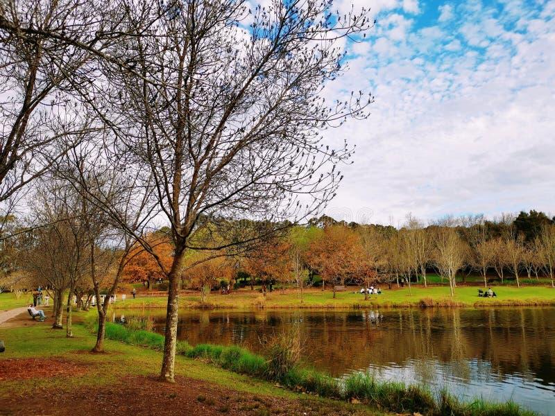 Fagan Park, Sydney Australia royalty free stock images