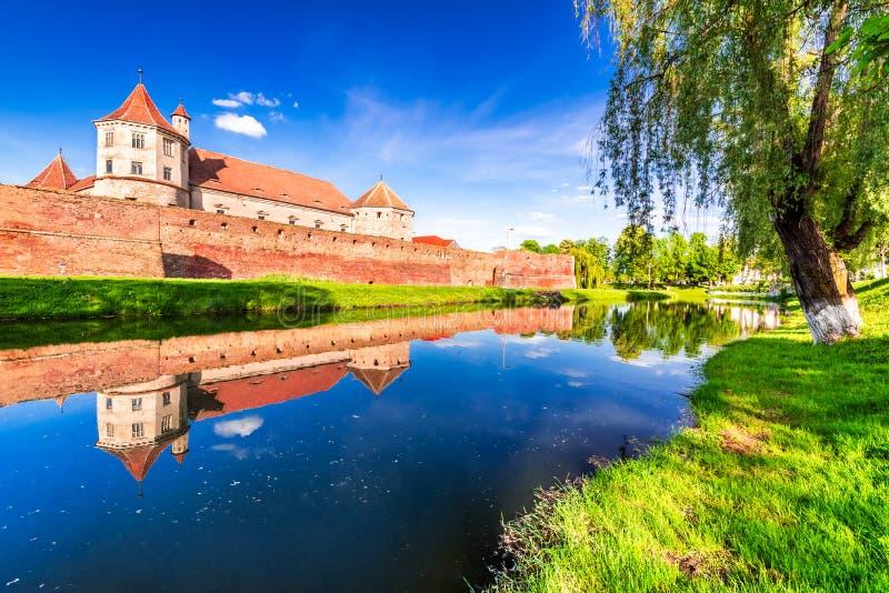 Fagaras forteca Transylvania, Rumunia, - zdjęcia royalty free