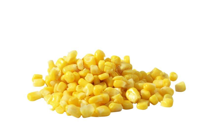 Fagioli del cereale fotografie stock libere da diritti