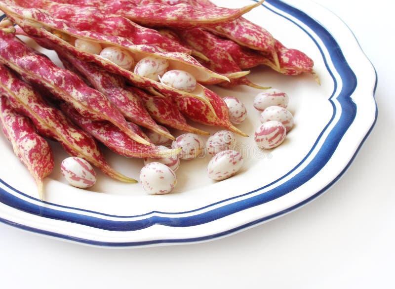Fagioli macchiati rossi su bianco immagine stock