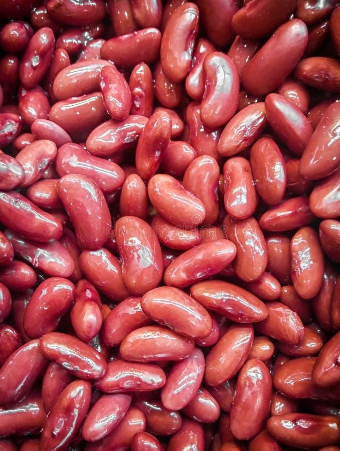 Fagioli rossi di recente cucinati per un'insalata fotografie stock libere da diritti