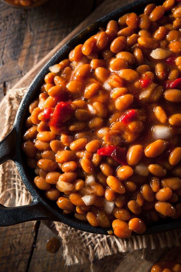 Download Fagioli In Salsa Casalinghi Del Barbecue Fotografia Stock - Immagine di fagiolo, vegetariano: 55351926