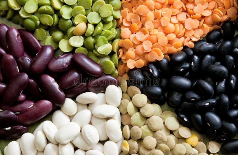 Fagioli secci Mixed fotografia stock