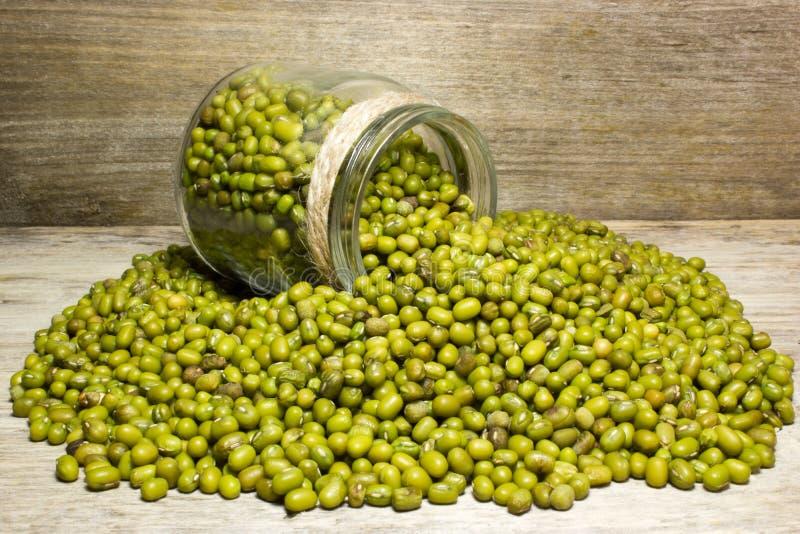Fagioli verdi verdi fotografia stock