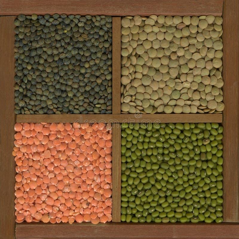 Fagiolo verde E lenticchie (rosso, verde, francese) fotografia stock libera da diritti