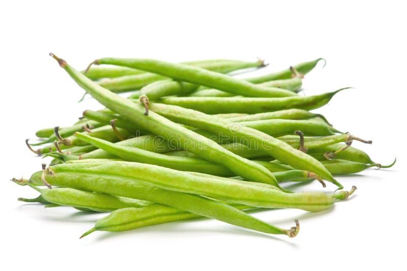 Fagiolo verde francese immagine stock