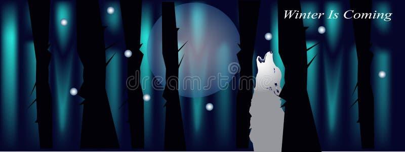 Fahne für facebook Abdeckung mit Nachtwaldwolf und -mond vektor abbildung