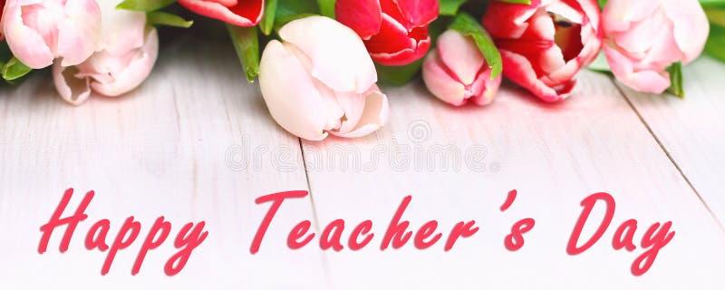 fahne Glücklicher Lehrertag mit Tulpenblume, Mitteilung für Lehrer am speziellen Tag der Bildung, Tulpenblumenstrauß lizenzfreie stockfotos