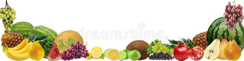 Fahne mit einer Vielzahl von Früchten vektor abbildung