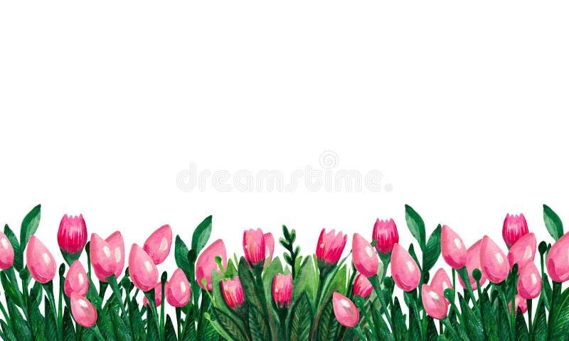 Fahnen-Aquarellsatz ist eine Sammlung Frühlingsblumen von Tulpen in ein Vase Blütenpflanzen für botanisches Drucken stock abbildung