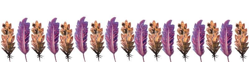 Fahnenrahmen in einer Verzierung von Vogelfedern von braunen und lila Blumen Aquarellhandtechnik, eine große Wahl für den Entwurf stock abbildung