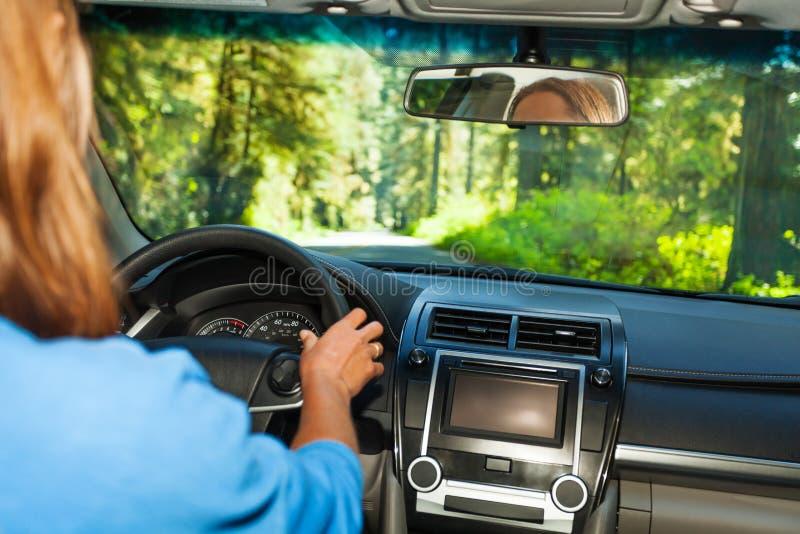 Fahren der Frau innerhalb des Autos mit Waldansicht stockbilder