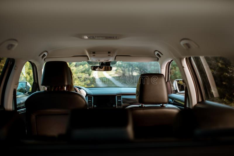 Fahren des Autos auf dem Waldweg stockbilder