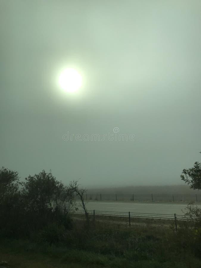 Fahren Sie mit Nebel lizenzfreies stockbild