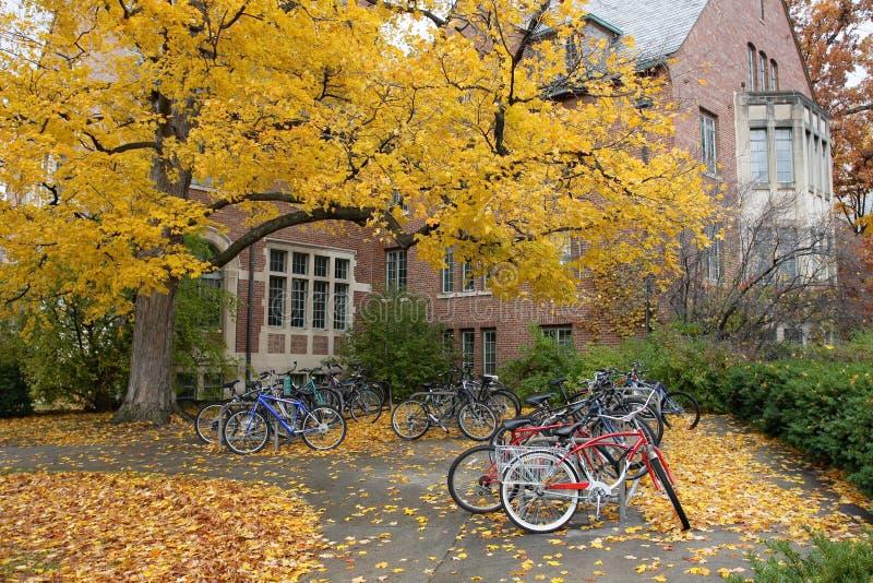 Fahrräder auf Fall-Hochschulcampus stockbilder