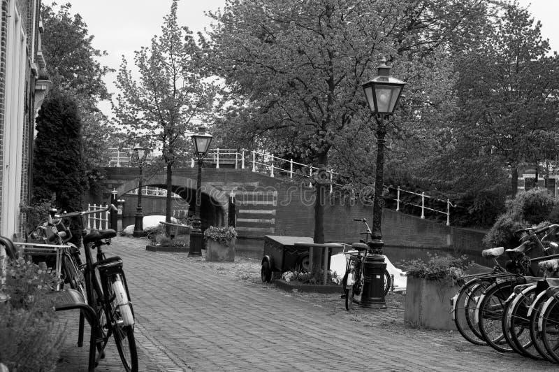 Fahrräder in Leiden, die Niederlande stockfotografie