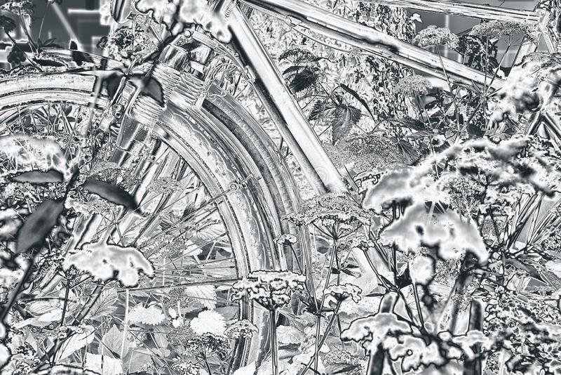 Fahrräder versteckt hinter Grundältestem stockfotos