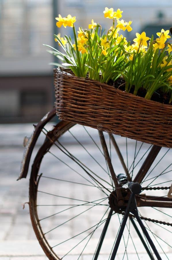 Fahrrad mit Blumen lizenzfreie stockbilder
