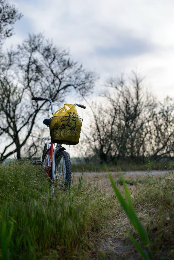 Fahrrad mit einem Korb stockfotos