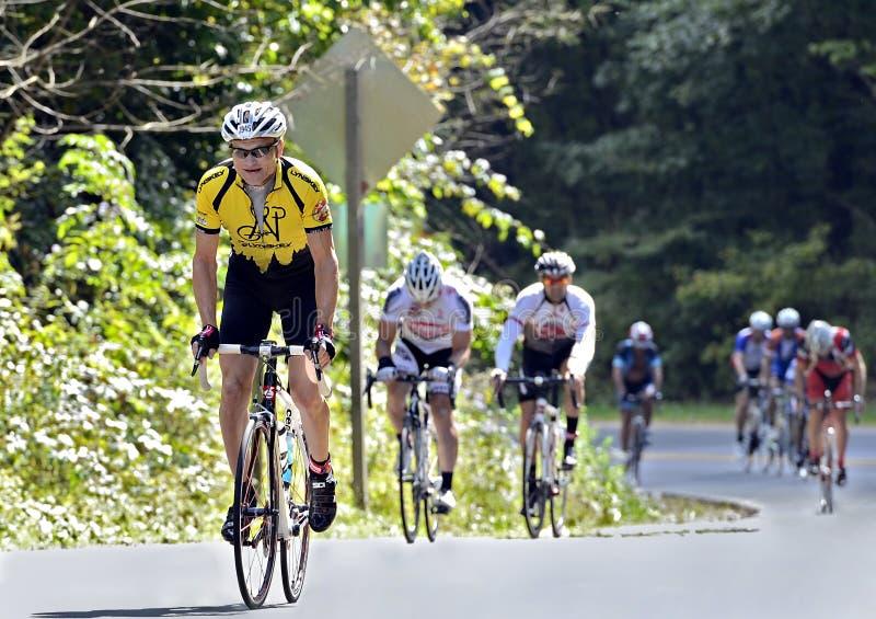 Fahrrad-Reiter auf einer Gebirgsstraße stockfotos