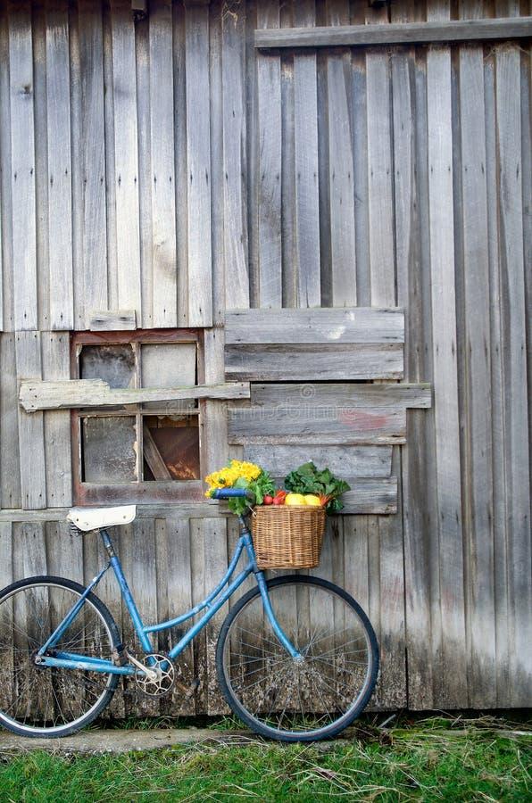 Fahrrad und Gemüse stockfoto