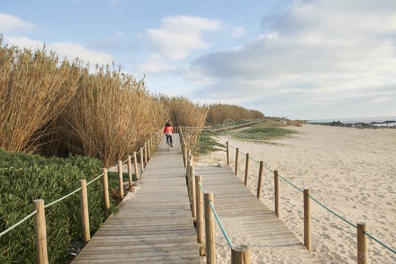 Fahrradfahrt auf den Strandgehweg lizenzfreie stockfotografie