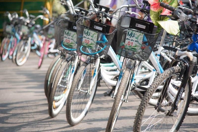Fahrradreihen von neuen Fahrrädern stockbild