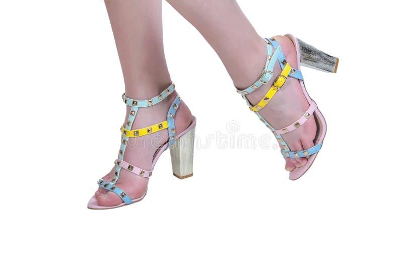 Fahrwerkbeine der Frauen in den Schuhen lizenzfreies stockfoto
