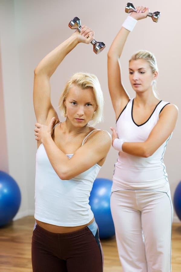 Download Faire Des Gens De Forme Physique D'exercice Image stock - Image du figure, fitness: 8662119
