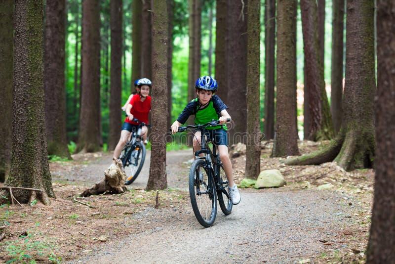 Faire du vélo actif de gens photographie stock libre de droits