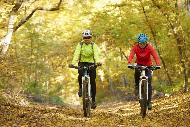Faire du vélo de femme extérieur photos libres de droits