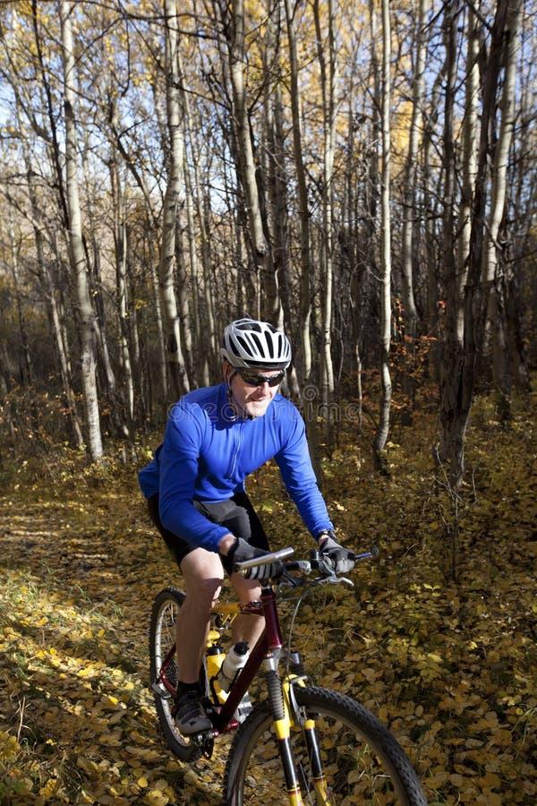 Faire du vélo de montagne d'homme photographie stock