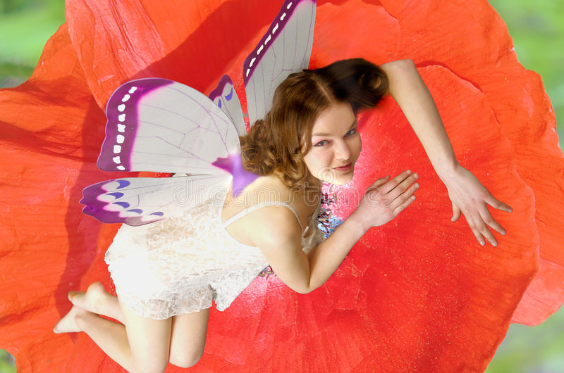 Download Fairies 11 stock image. Image of gorgeous, surreal, cute - 951729