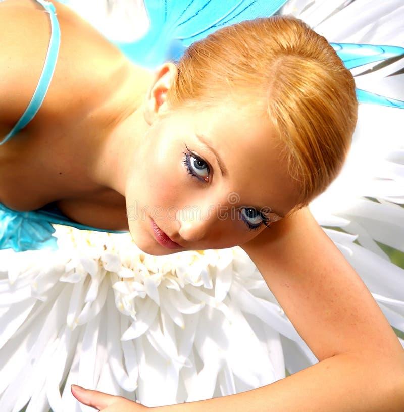 Fairies 4 royalty free stock photos