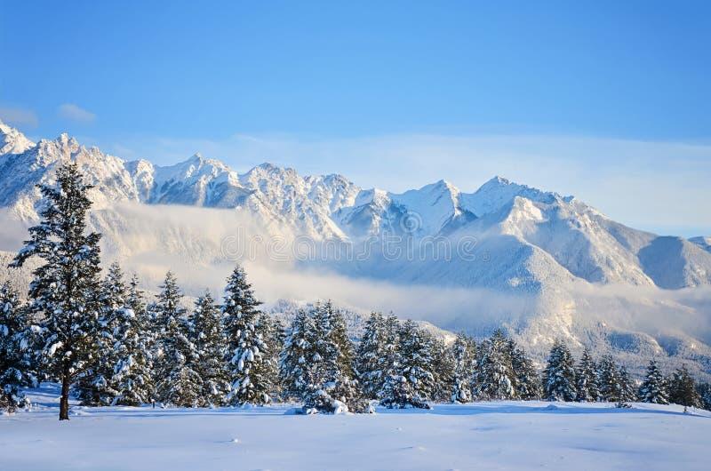 Fairmont Mountain Range Landscape in Winter royalty free stock photo
