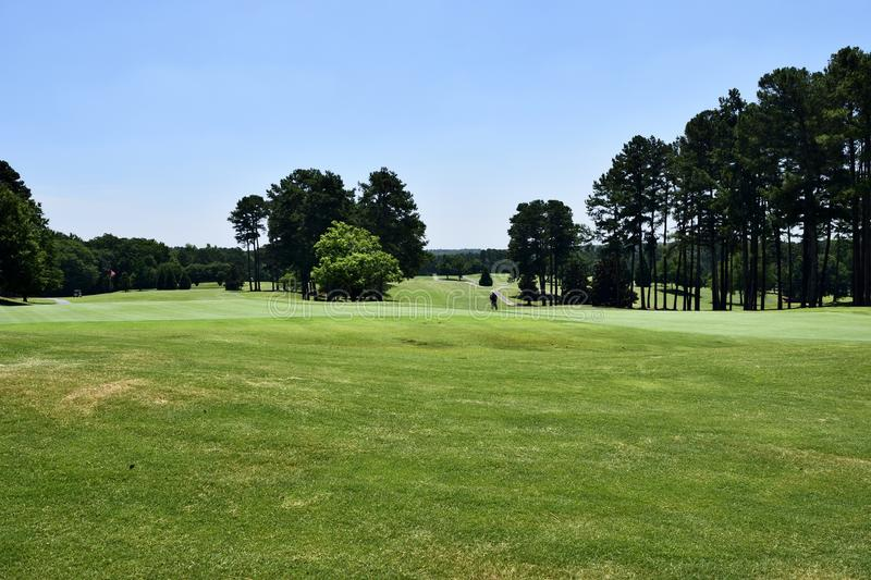 Fairway on Georgia golf course. Tree lined fairway of golf course in Georgia, USA on sunny day with blue skies stock photos