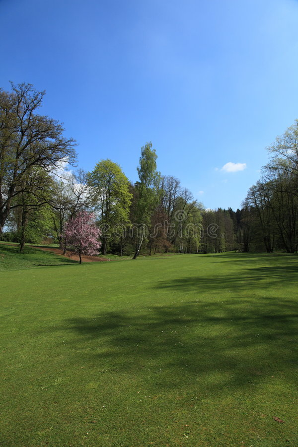 Fairway of a golf course royalty free stock image