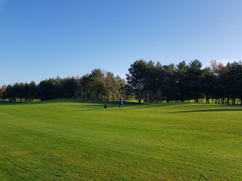 Fairways et verts de terrain de golf de golf photographie stock libre de droits