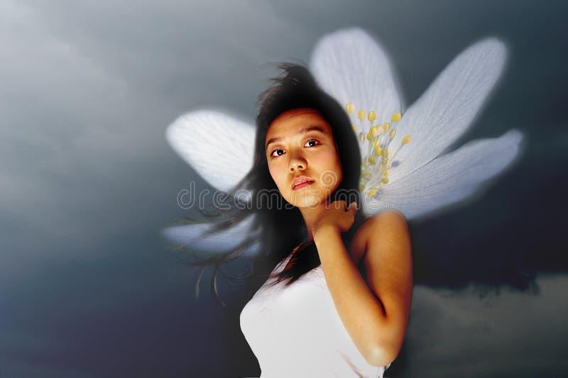 fairy девушка любит посмотреть стоковые фото