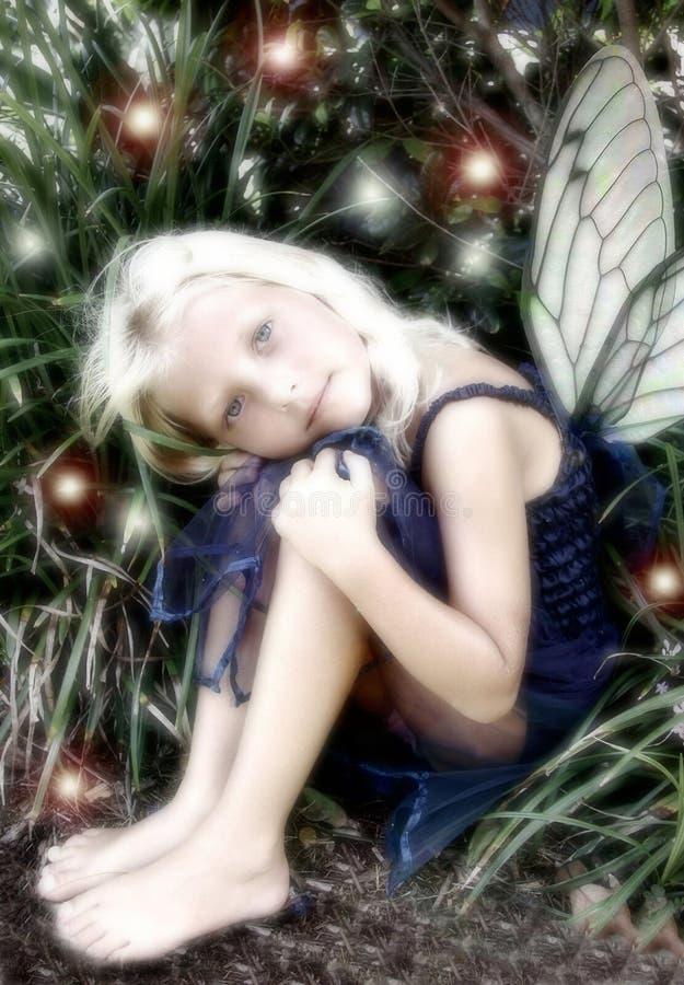 fairy немногая потеряло стоковые изображения