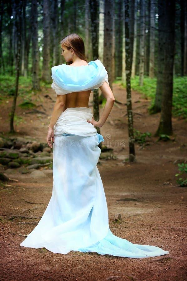 Free Fairy Royalty Free Stock Photo - 47654585