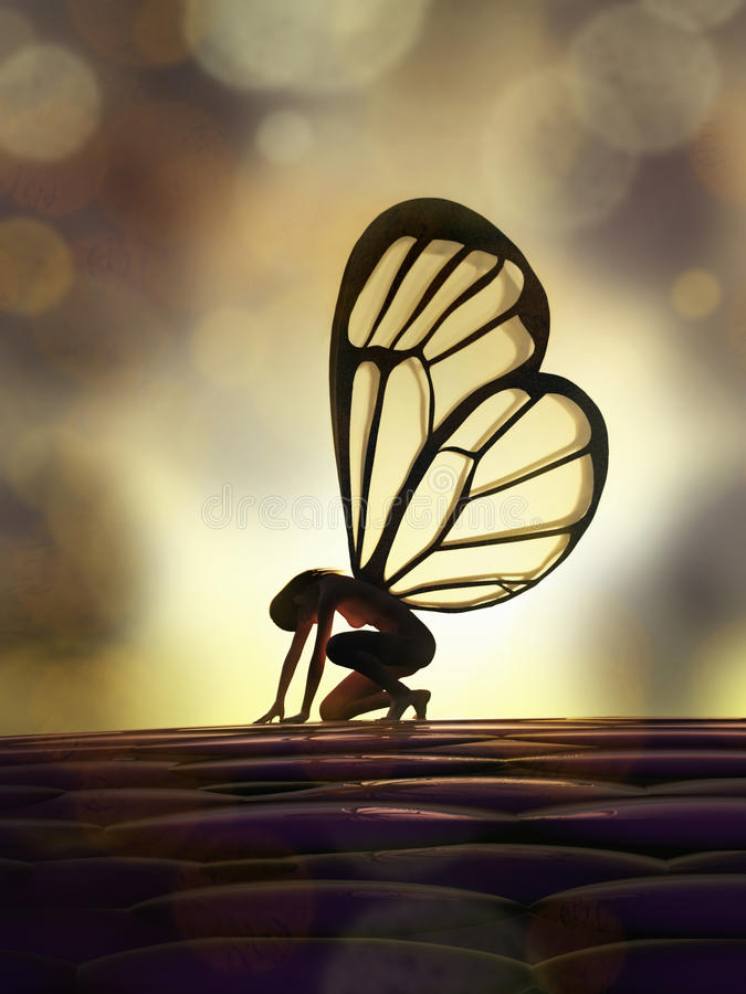 Download Fairy butterfly stock illustration. Image of female, beauty - 27163030