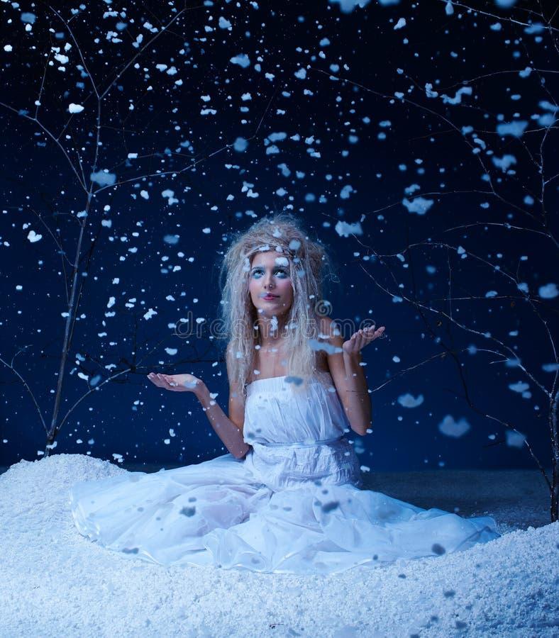 Fairy congelato fotografie stock