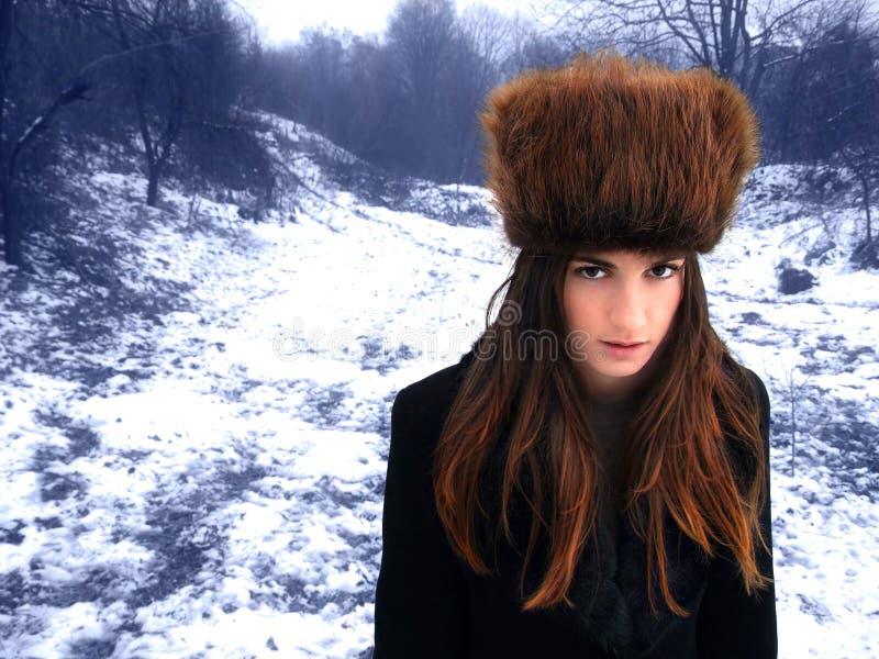 Fairy della foresta fotografie stock