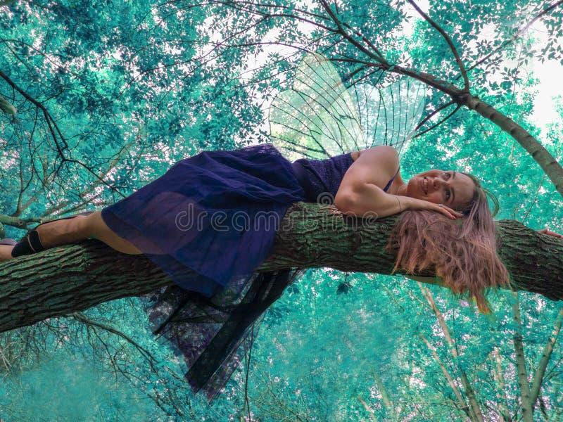 Fairy di dente Forest Fairy Resto dentro fotografia stock libera da diritti