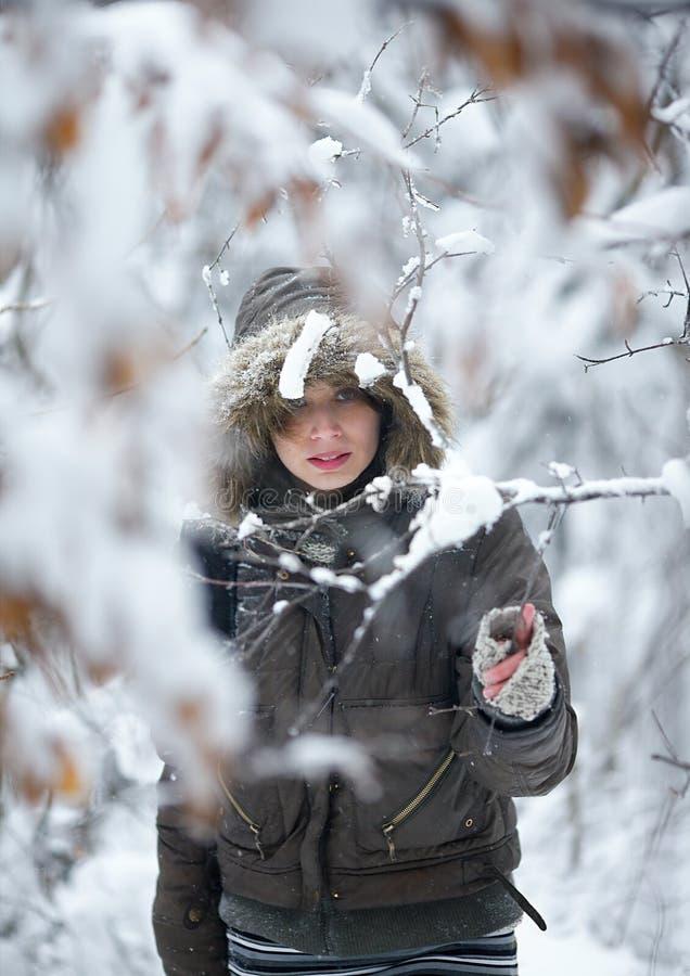 Fairy di inverno immagini stock libere da diritti