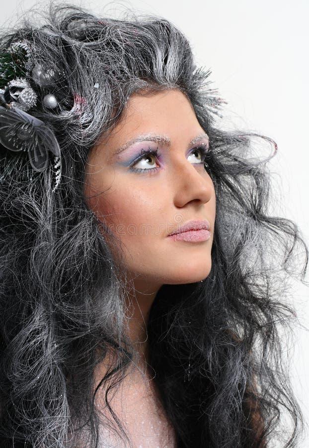 Fairy do inverno imagem de stock